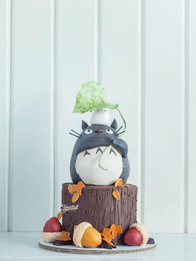 Edited-DSCF9654--Totoro