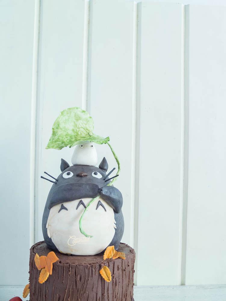 Edited-DSCF9656--Totoro