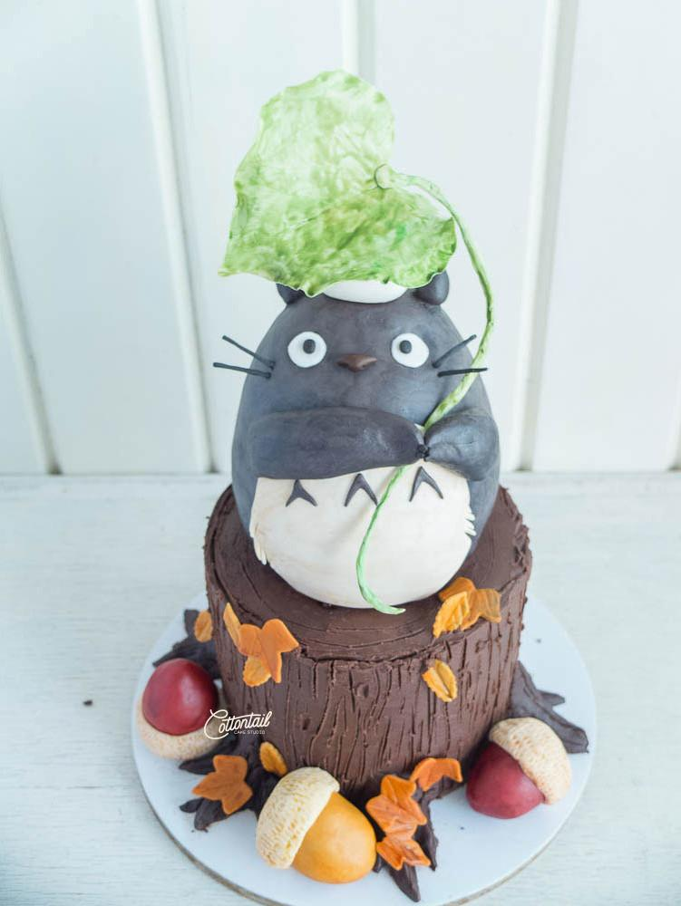 Edited-DSCF9661--Totoro