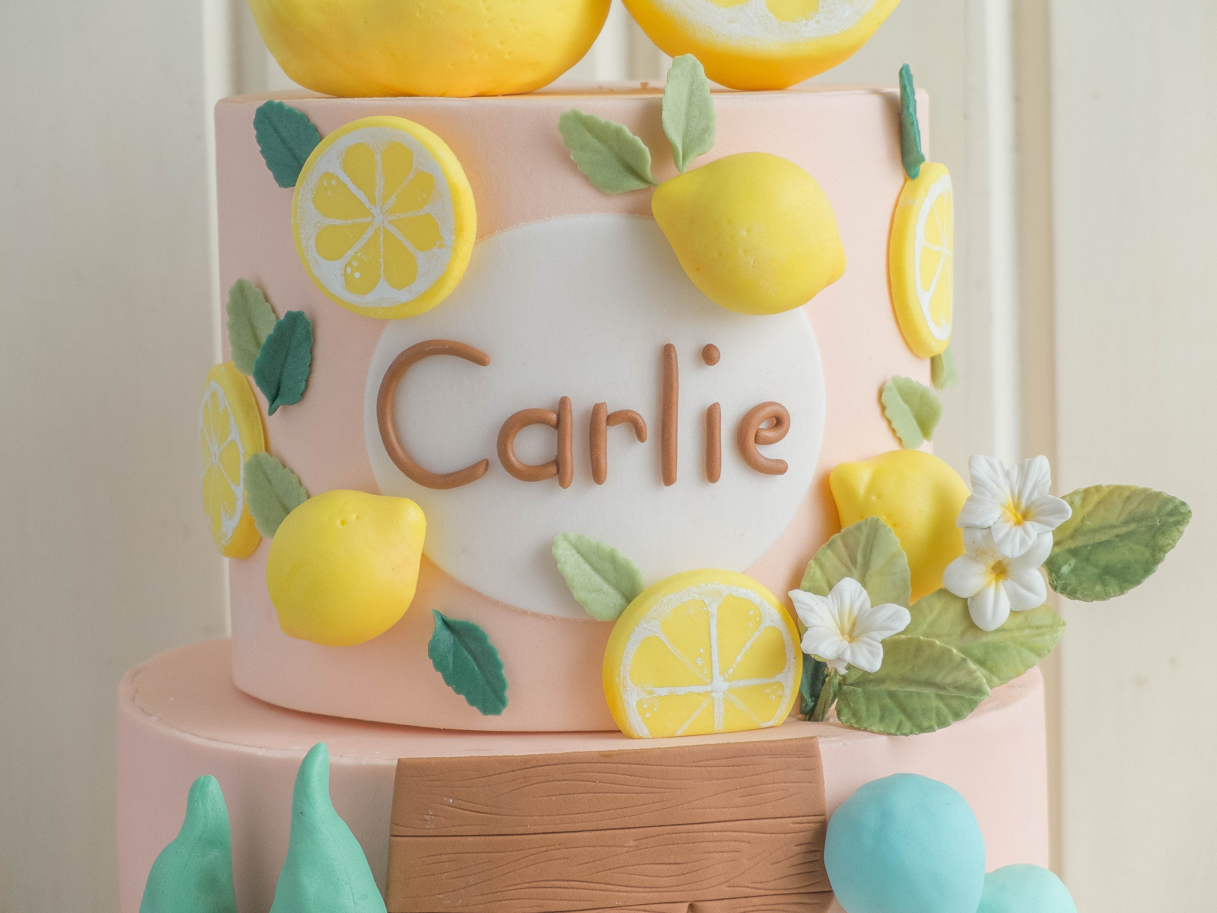 CTCakes - Carlie and her Lemonade Stand-4